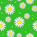 Beautiful creative textiles. White daisy flower on a yellow background. Wallpaper for children`s room, gift wrapping. Vector
