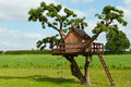 Beautiful creative tree house handmade for kids in backyard of a Royalty Free Stock Photography