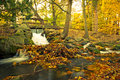 Beautiful creek in the autumnal park Stock Photography