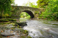 Beautiful creek of clare glens co limerick ireland Royalty Free Stock Photos