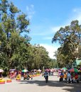 stock image of  A beautiful day at Burnham Park in Baguio City. Kids taking a bike ride.