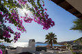 Beautiful day summer day bodrum turgutreis turkey Stock Photo