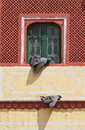 Beautiful decorated colorful window jaipur city palace rajasthan Royalty Free Stock Photo