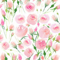 Beautiful delicate tender cute elegant lovely floral colorful spring summer pink and red roses with buds and leaves bouquet waterc