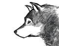 Beautiful dignity wolf chinese brush paint style illustration Stock Photos