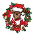 A beautiful dog in a New Year`s wreath with balls and bows. Vector illustration. New Year`s and Christmas.