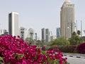 Beautiful Doha Royalty Free Stock Photography