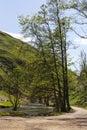 Beautiful Dovedale, Derbyshire,UK Royalty Free Stock Photo