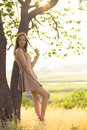 Beautiful dreamy girl walking in a field in a dress at sunset, a young woman enjoying summer nature leaned on a tree trunk Royalty Free Stock Photo