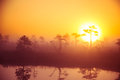A beautiful, dreamy morning scenery of sun rising above a misty marsh. Colorful, artistic look.