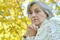 Beautiful Elderly Woman At Nat...