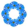 Beautiful elegant floral wreath. Hand drawn botanical watercolor design element Royalty Free Stock Photo