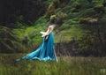 The beautiful elf Royalty Free Stock Photo