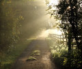Beautiful English Country Lane Stock Photos