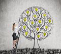 A beautiful entrepreneur is climbing to the drawn tree with light bulbs. A concept of new business ideas for start up. Concrete ba Royalty Free Stock Photo