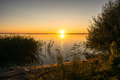 Beautiful Evening landscape with lake, silhouette tree and bushes during sunset.Bhopal India Royalty Free Stock Photo