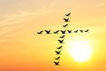 Beautiful evening sky & birds forming holy cross Royalty Free Stock Image