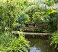 Beautiful exotic park Stock Image