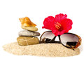 Beautiful exotic shell stones red flower and glasses on sand Royalty Free Stock Image