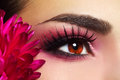 Beautiful Eye Makeup Stock Images