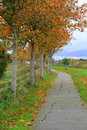 Beautiful Fall walk in peaceful setting Royalty Free Stock Photo