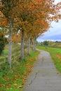 Beautiful Fall walk in peaceful setting Royalty Free Stock Photo