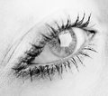 Beautiful female eye Royalty Free Stock Photo
