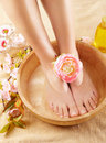 Beautiful female feet Royalty Free Stock Photography