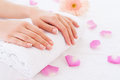 Beautiful female hands. Royalty Free Stock Photo