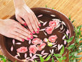 Beautiful female hands with petals and leaves close up image of healthy on a brown ceramic bowl pink the image is taken on a Royalty Free Stock Photos