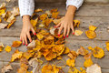 Beautiful female hands playing with dry leaves Stock Photography