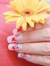 Krásny prsty držať kvetina