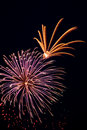 Beautiful fireworks on the black sky background Royalty Free Stock Photo