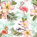 Beautiful flamingo and pink plumeria flowers on white background. Exotic tropical seamless pattern. Watecolor painting.