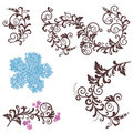 Beautiful floral design elements Royalty Free Stock Photo
