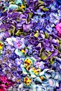 Beautiful floral pattern Stock Photos