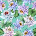 Beautiful floral seamless pattern. Large colorful lotus flowers with leaves on turquoise background. Hand drawn illustration.