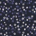Small white, blue and purple flowers on navy blue background.