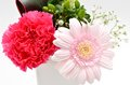 Beautiful flower arrangement. Royalty Free Stock Photography