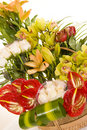 Beautiful flower arrangement Stock Image