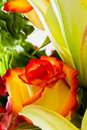 Beautiful flower arrangement closeup of a rose with orange and red coloring in a bouquet Stock Photos
