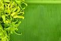 Beautiful flower on banana s leaf stock photo Stock Photography