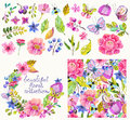 Beautiful flower collection with pattern and wreath
