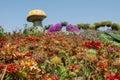 Beautiful flower field with giant mushroom Royalty Free Stock Photo