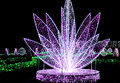 Beautiful flower or fountain illumination night and colors in amusement park Royalty Free Stock Images