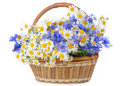 Beautiful flowers in a basket Royalty Free Stock Photography