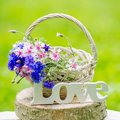 Beautiful flowers in the basket and word love still life with bunch of Royalty Free Stock Photos