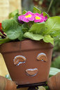 Beautiful flowers closeup picture of potted and smile face on the flower pot Stock Photos