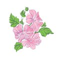 Beautiful Flowers pink  vector illustration Royalty Free Stock Photo