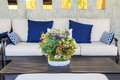 Beautiful flowers in vase on table in living room Royalty Free Stock Photo